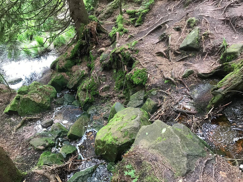 Wanderung im Hägeles- und Brunnenklinge